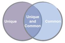 unique-and-common